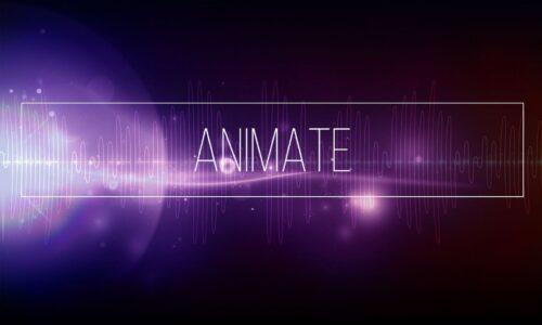 Adobe Animate