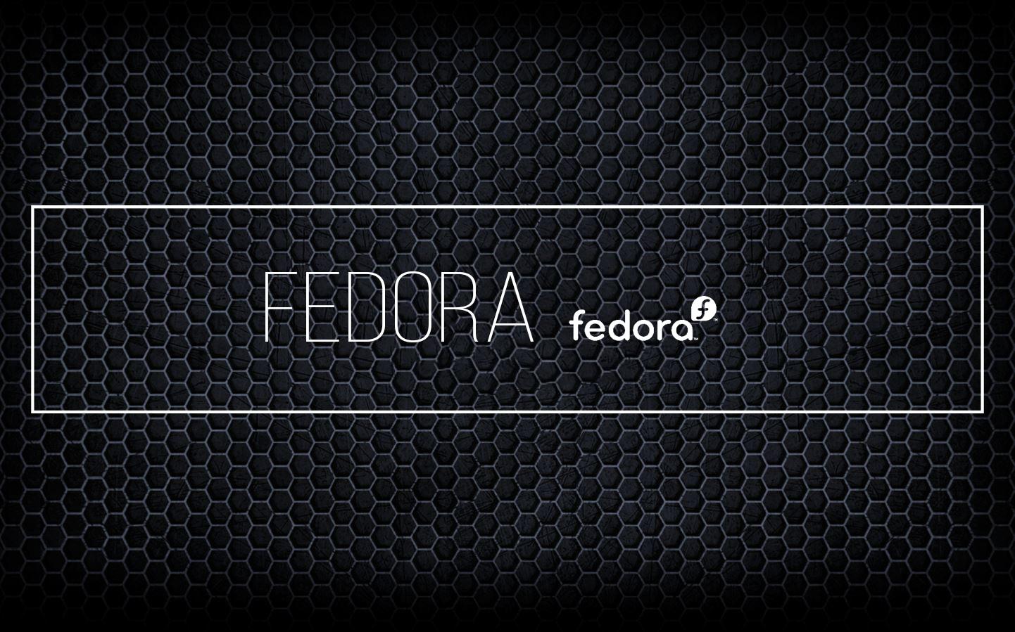 fedora1-1
