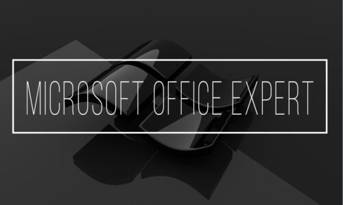 Microsoft Office Expert  2013