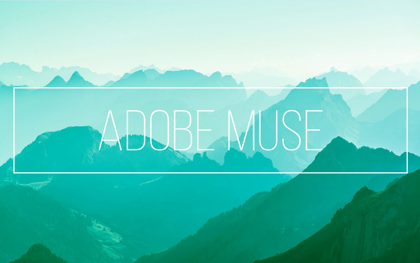 Adobe Muse – Business Systems Digit