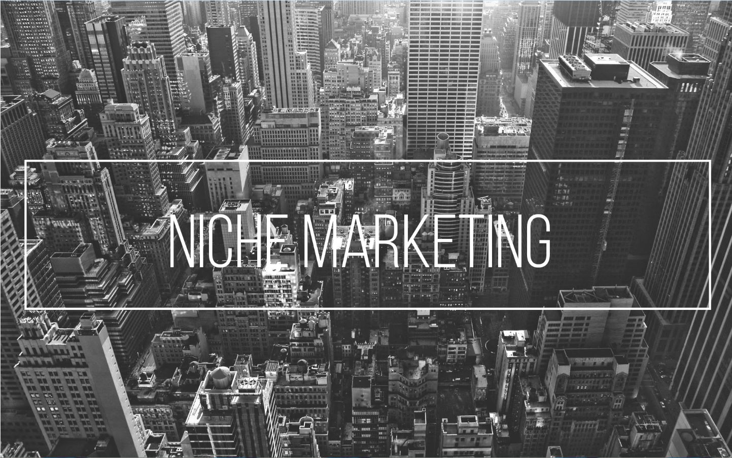 niche-marketing-1